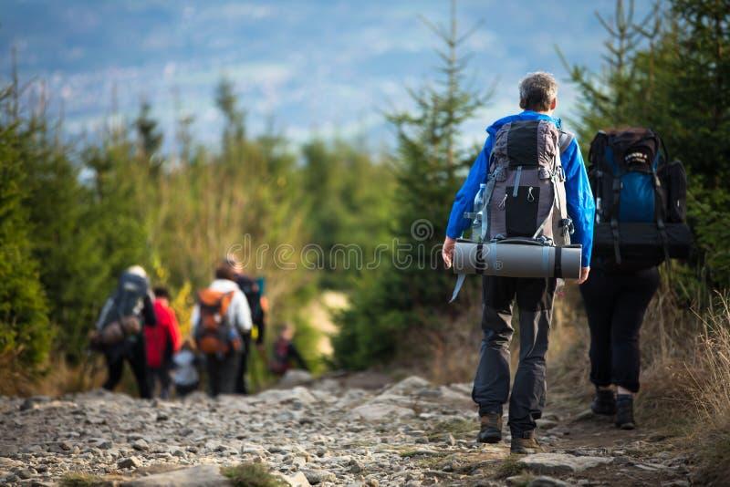People hiking royalty free stock photo