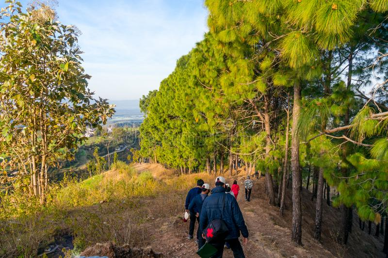 People hiking in the woods near dehradun india. Dehradun, India - 10th Mar 2018: People hiking on a mountaintop with trees all around in Dehradun india asia. The royalty free stock images