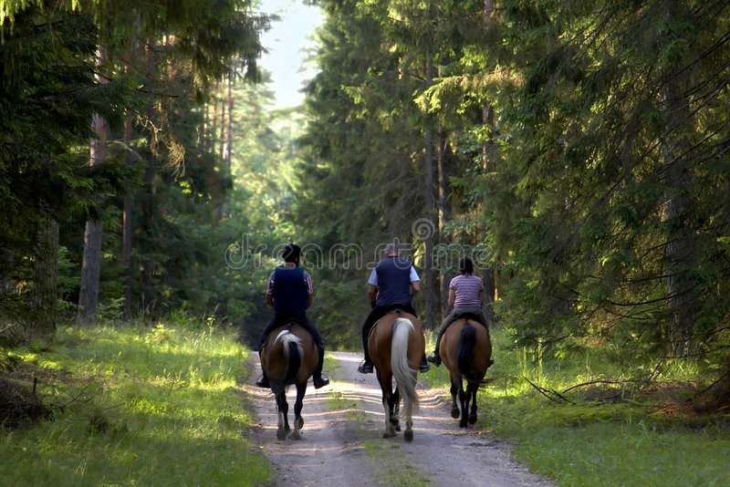 People on horse stock photography