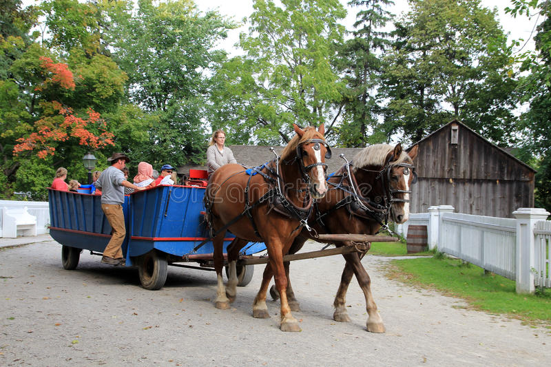 People on Horse Wagon royalty free stock images