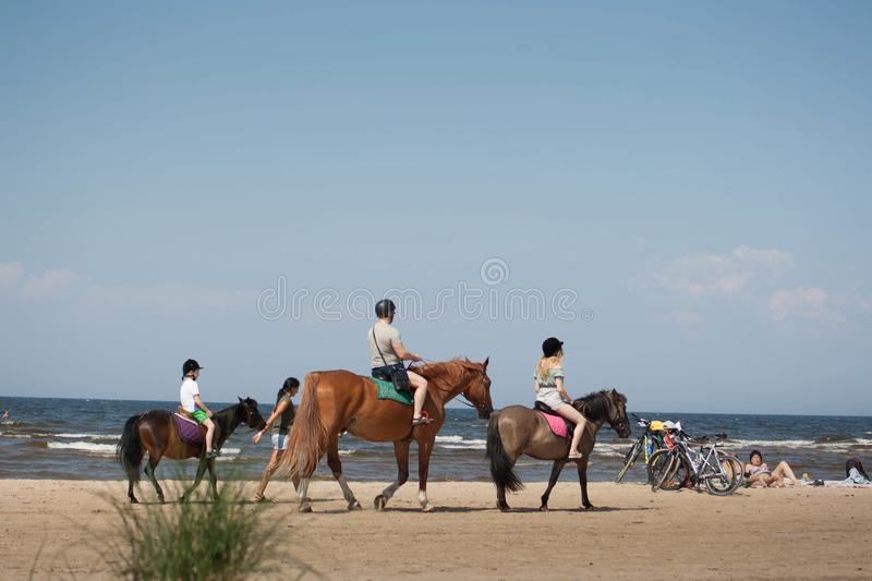 People on horses on beach walk summer day stock photography