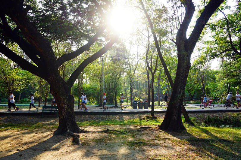People are jogging and cycling in the public park in the early morning. At Wachirabenchathat Park stock photos