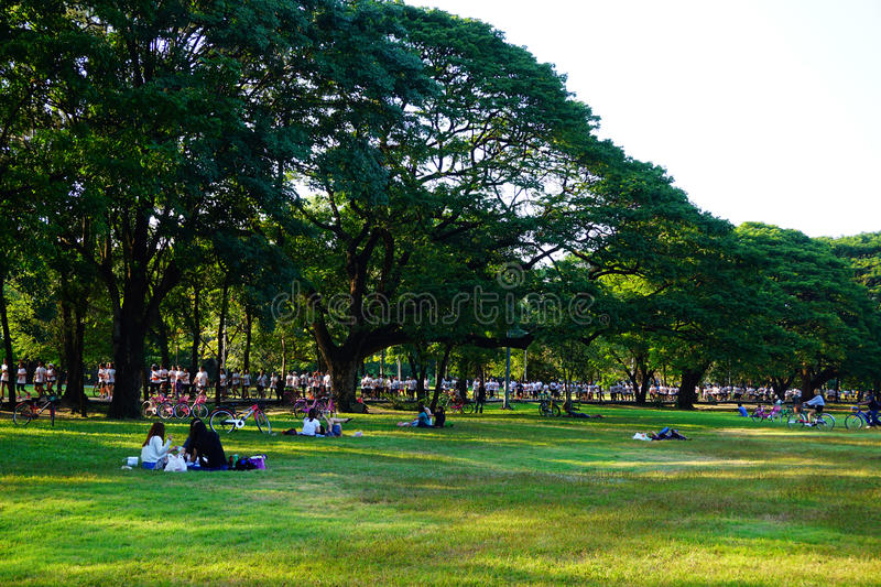 People are jogging and cycling in the public park in the early morning at Wachirabenchathat Park. Or State Railway Public Park is a name of public park in stock images