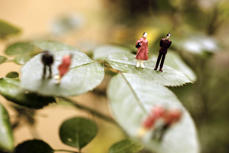 People On A Leaf Royalty Free Stock Photography