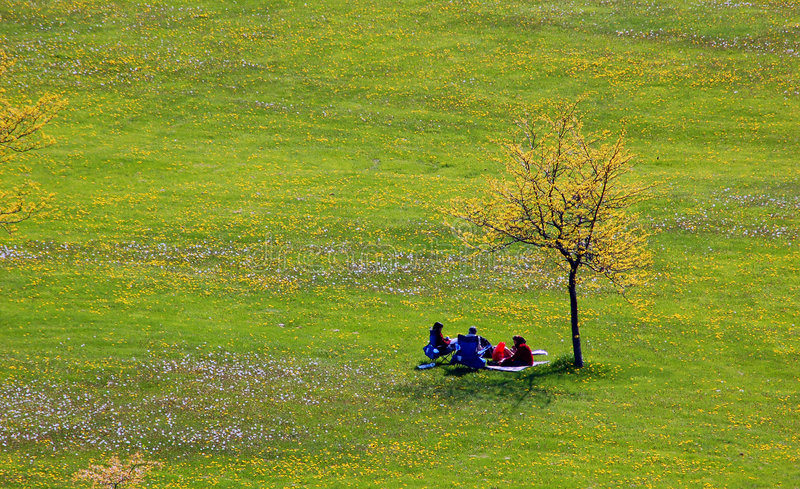 People and lonely tree stock photography