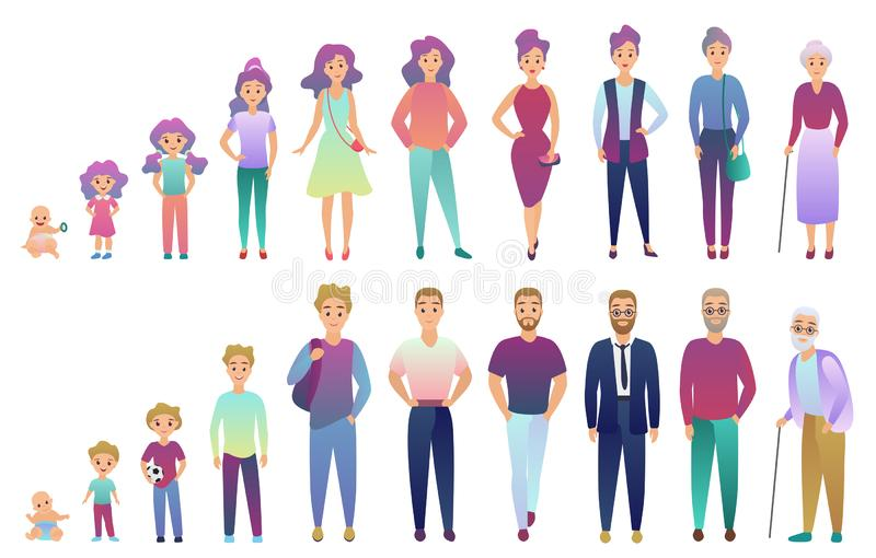 People male and female aging process. From baby to elderly person growing set. Trendy fradient color style vector. Illustration vector illustration