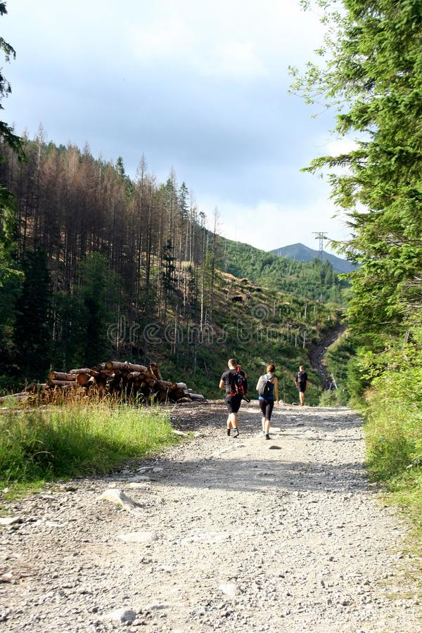 People on a mountain trail made of stones who go to Kasprowy Wierch. In the Tatra Mountains stock photo
