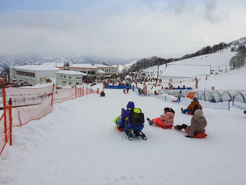 People playing ski sliders in gala yuzawa snow resort Japan ,2 feb 2018 stock image