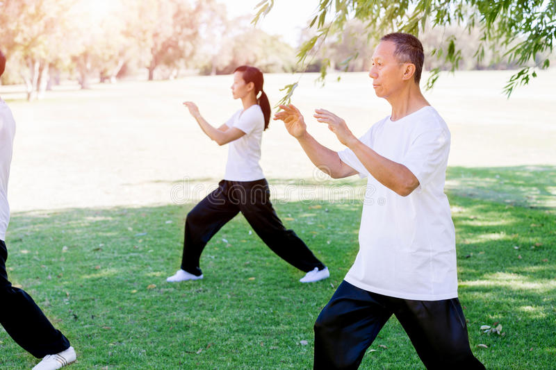 People practicing thai chi in park royalty free stock photos