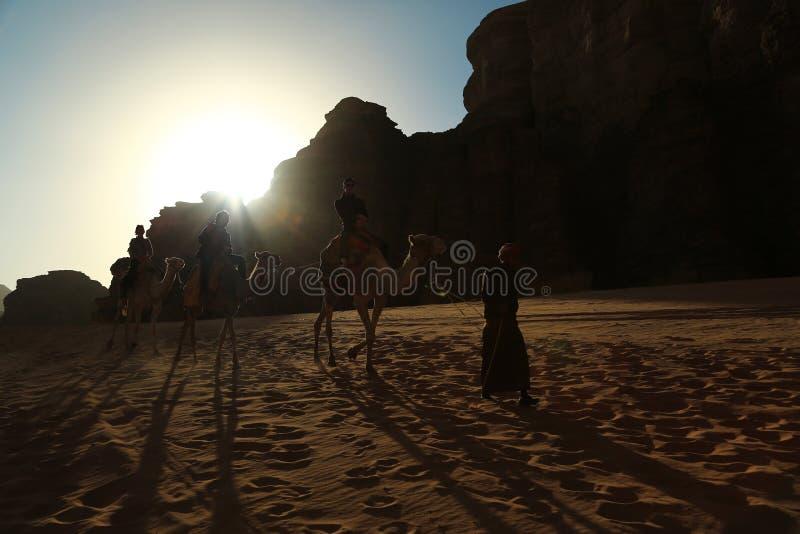 People rides on camels in Wadi Rum desert in Jordan royalty free stock photography