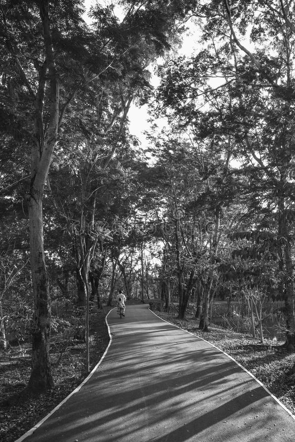 People is riding in the Sri Nakhon Khuean Khan Park, Bang Kachao, Thailand. Image of black and white. stock images