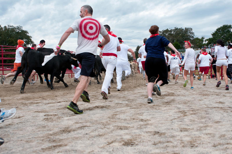 Download People Run With The Bulls At Unique Georgia Event Editorial Image - Image of smiling, extreme: 34764070