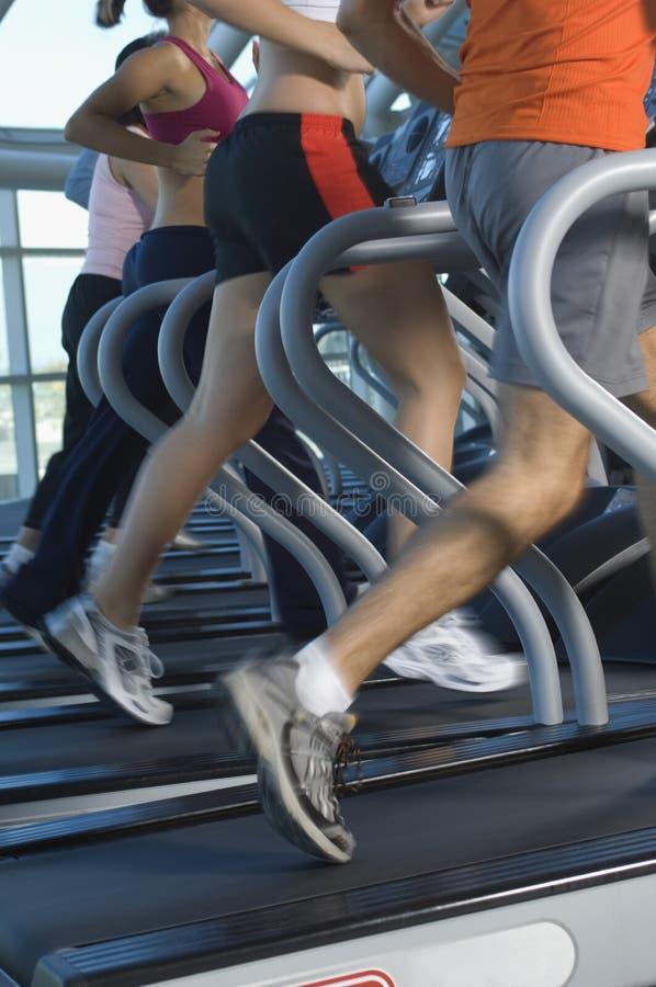 People Running On Treadmill Stock Photo