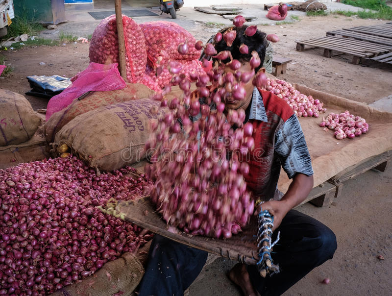 People at a rural market in Colombo, Sri Lanka. Colombo, Sri Lanka - Sep 5, 2015. A man selling onion at rural market in Colombo, Sri Lanka. Colombo is the royalty free stock images