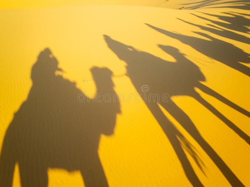 People`s shadow riding camels stock photography