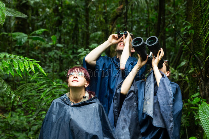 People Searching For Birds With Binoculars Stock Photo