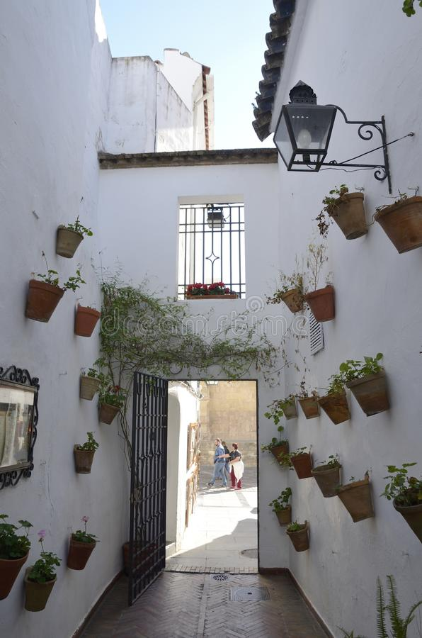 Iron door at patio. People seen from patio decorate with plants pots in the old town of Cordoba, Andalusia, Spain royalty free stock image