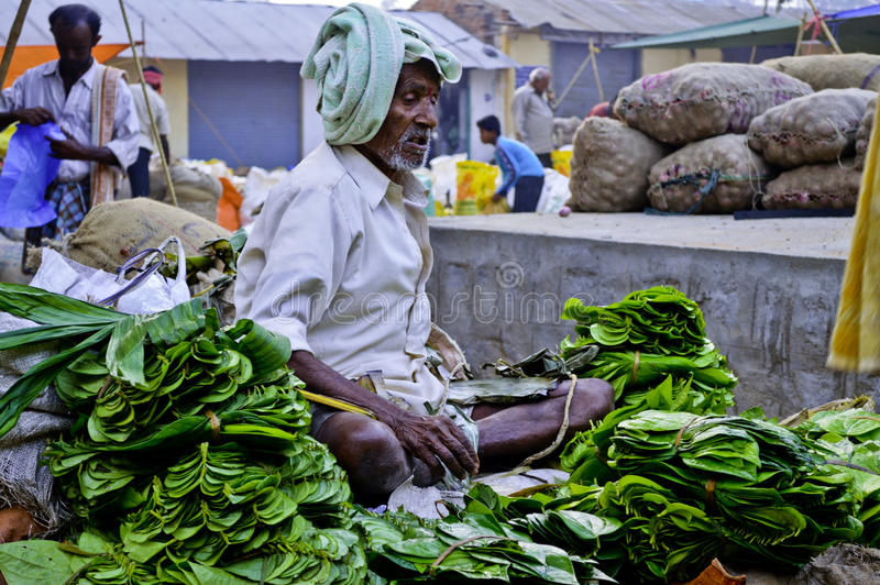Old aged greengrocer. People are selling and buying various commodities at Indian rural market royalty free stock images