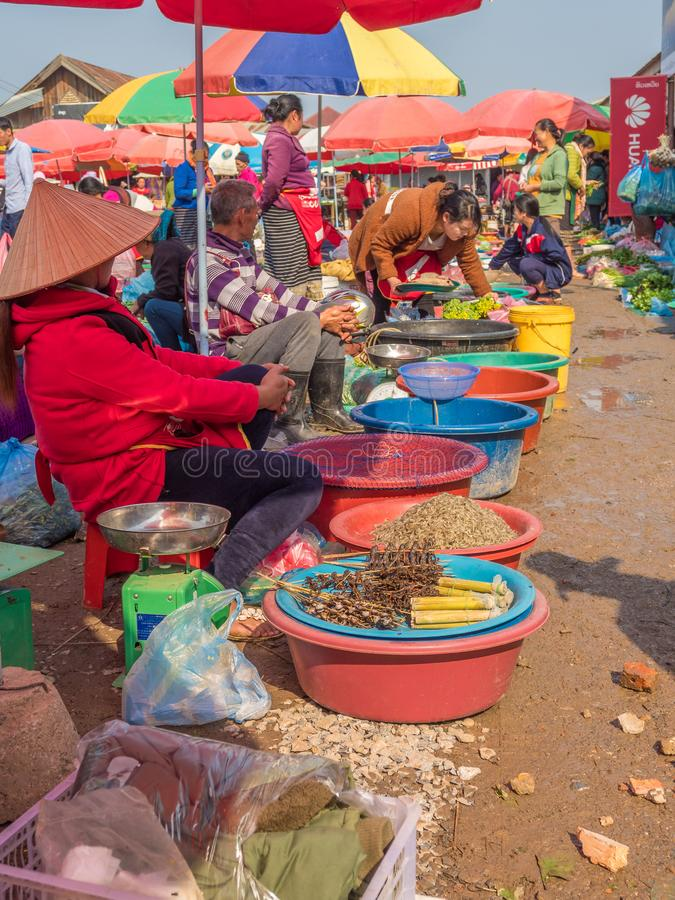 Produce and people at market. Phonsavanh, Laos. People selling wide variety of wild-caught animals, sometimes illegally traded, foraged and other products at stock photography