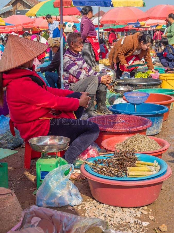 Produce and people at market. Phonsavanh, Laos. People selling wide variety of wild-caught animals, sometimes illegally traded, foraged and other products at royalty free stock photo