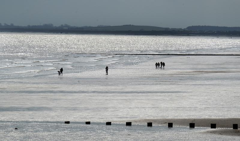 People in silhouette on brightly lit beach at low tide. royalty free stock photos
