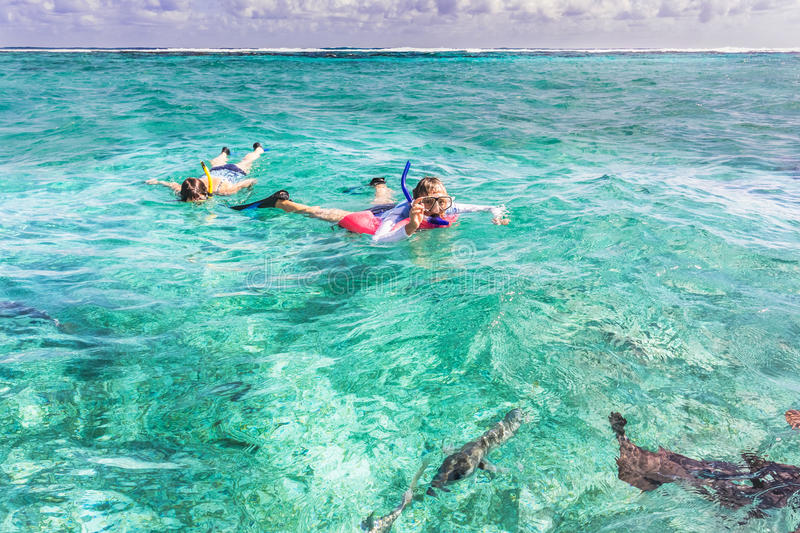 People are snorkeling in the reef near Caye Caulker in Belize royalty free stock images