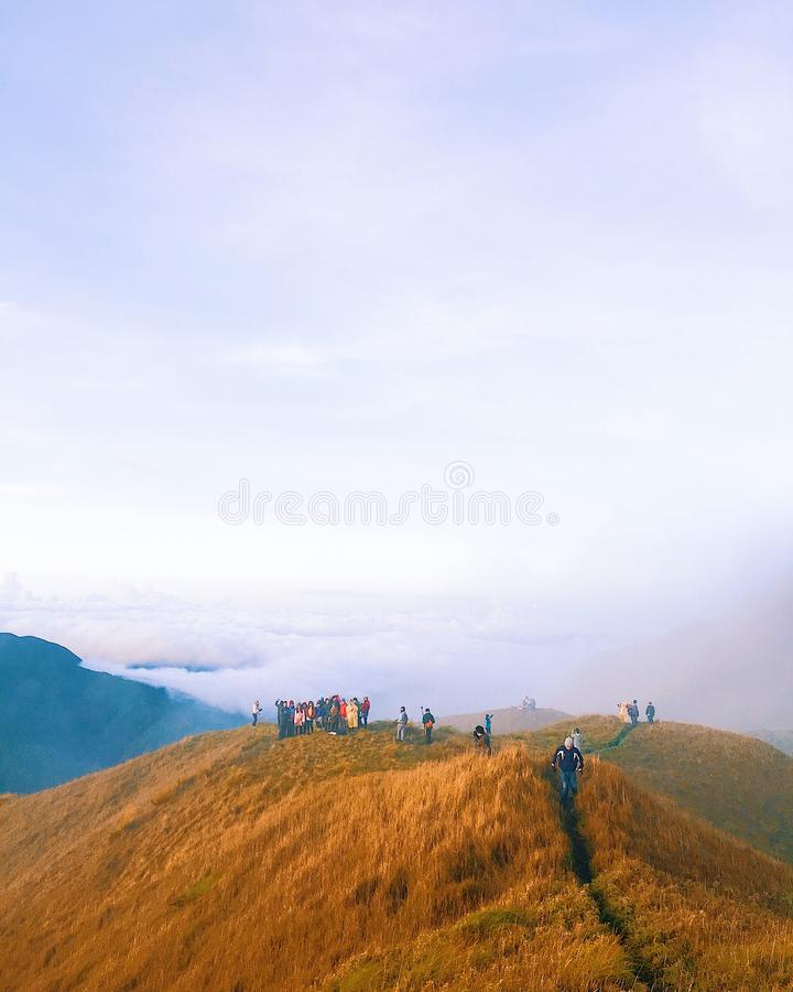 People Standing on Brown Hill royalty free stock photography