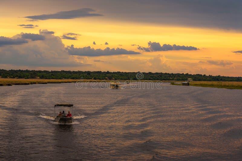 People on a sunset safari cruise on Chobe River in Chobe National Park, Botswana royalty free stock image