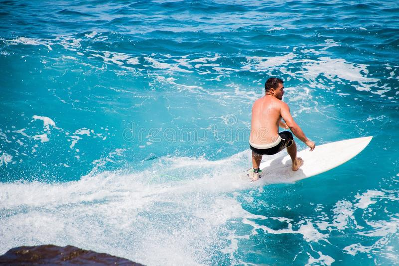 Surfing in Hawaii royalty free stock photos