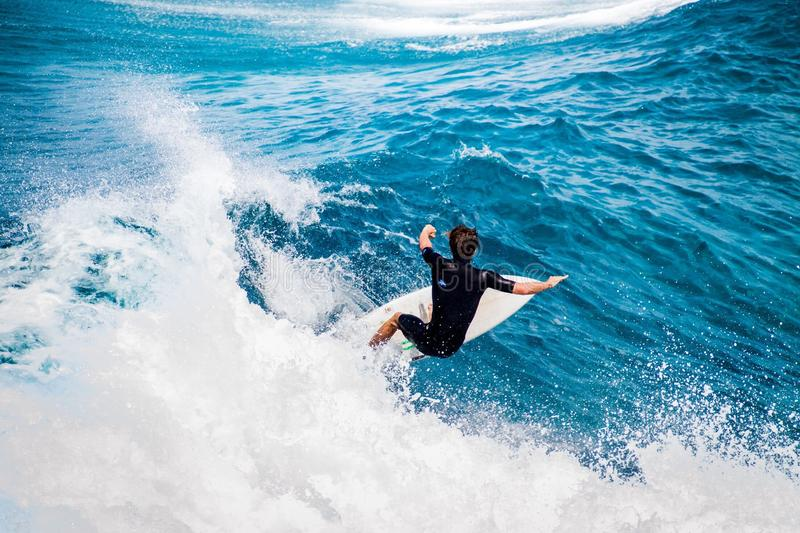 Surfing in Hawaii royalty free stock image
