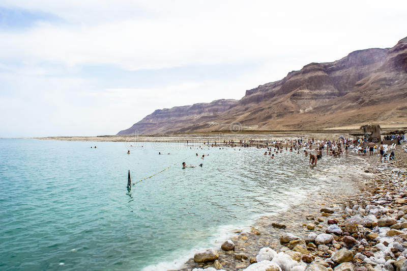 People swim in the Dead Sea stock images