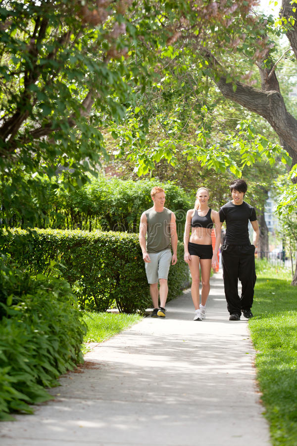 People taking morning walk. Morning walk of three friends in a park royalty free stock photography