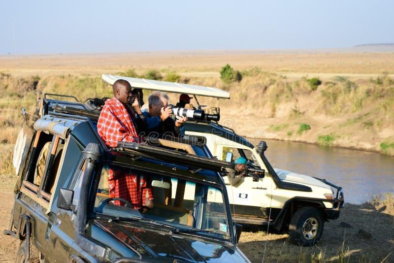 Safari at Masai Mara royalty free stock photo