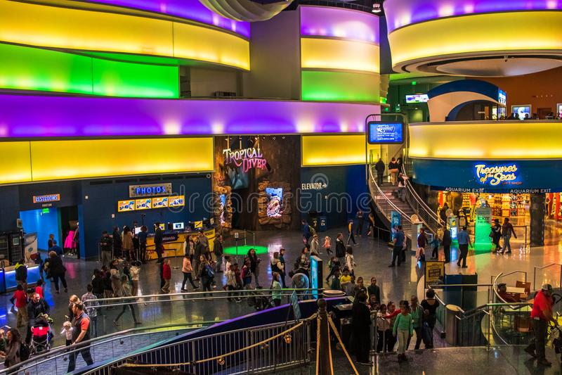 Georgia aquarium USA with tourists in main lobby. People and tourists wall in main hallway of georgia aquarium school field trip stock photo