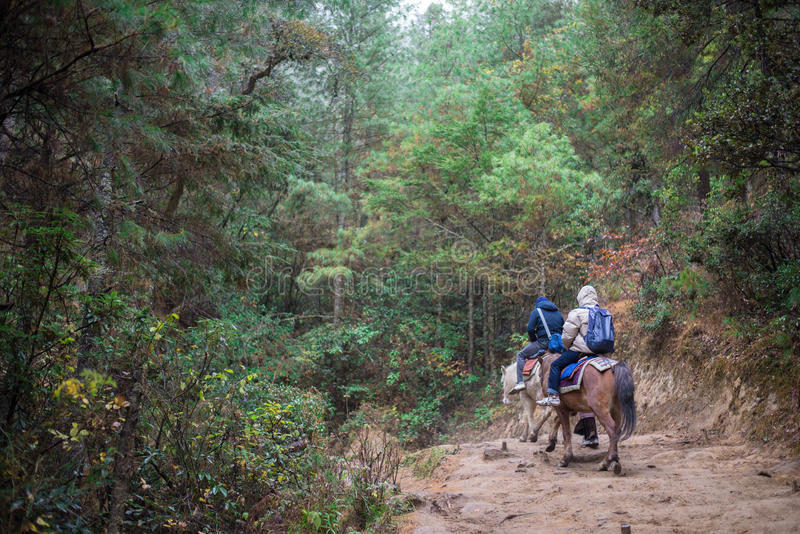 People traveling to Taktshang Goemba by horse. PARO - BHUTAN, DECEMBER 15 : People traveling to Taktshang Goemba by horse December 15, 2014 stock photography