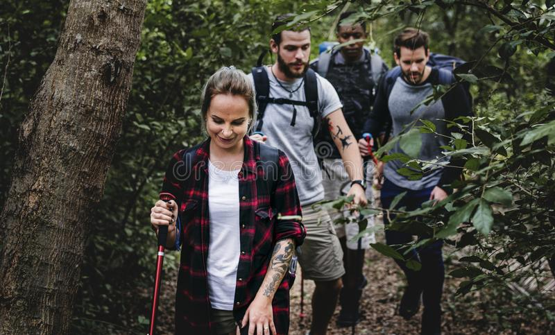 People Trekking in a forest stock photography