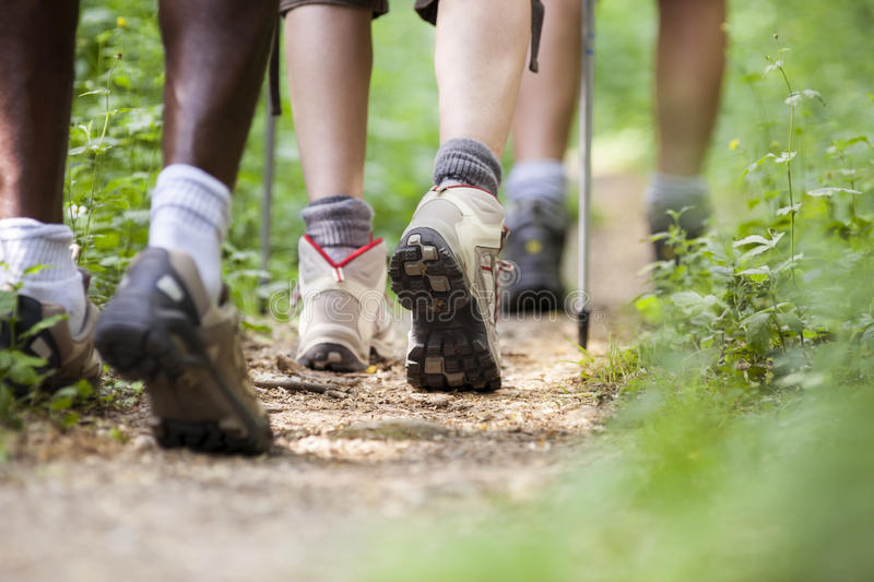 People trekking in wood and walking in row stock images