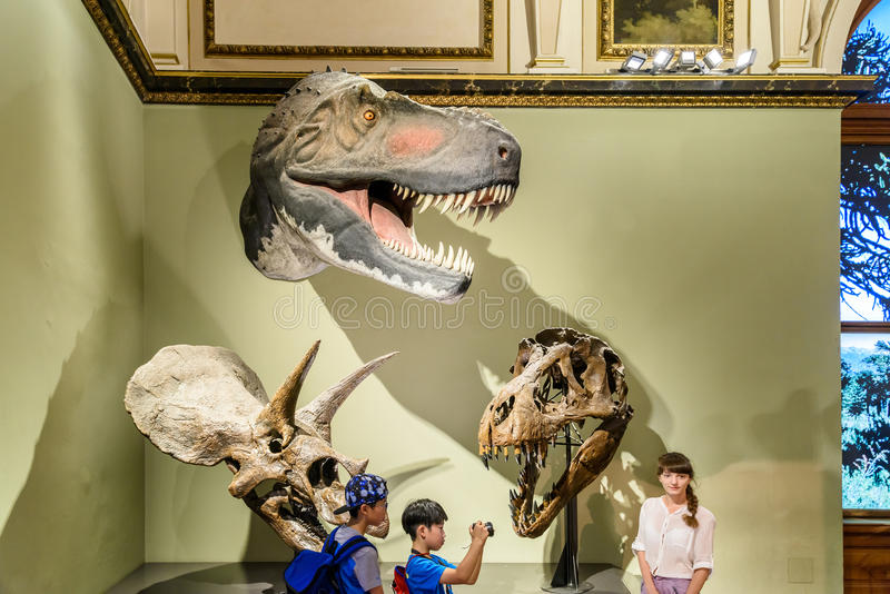 People Visit Dinosaur Prehistoric Exhibit At The Museum of Natural History (Naturhistorisches Museum) royalty free stock photography