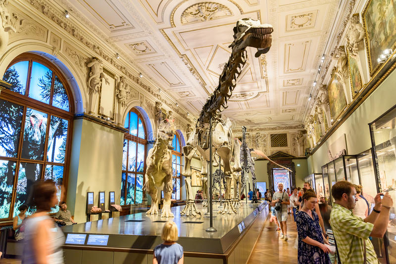 People Visit Dinosaur Prehistoric Exhibit At The Museum of Natural History (Naturhistorisches Museum) stock photography