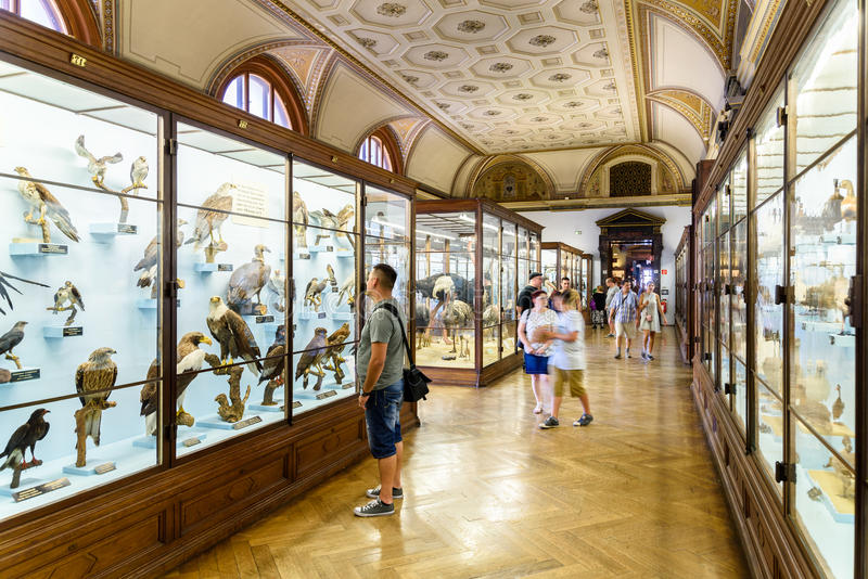 People Visit The Museum of Natural History In Vienna stock image