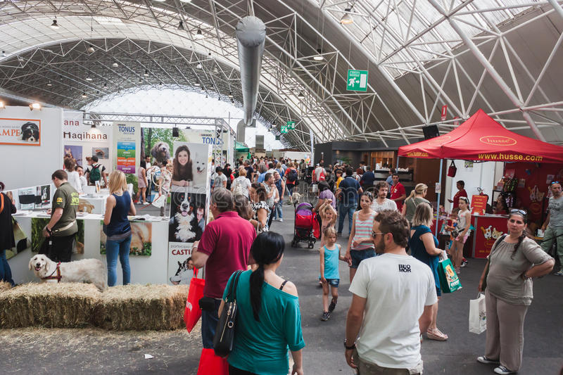 People visiting Quattrozampeinfiera in Milan, Italy. MILAN, ITALY - JUNE 7: People visit Quattrozampeinfiera, event and activities dedicated to dogs, cats and royalty free stock photo