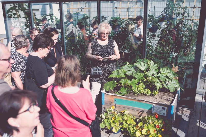 People visiting the rooftop garden at Tampere Talo. On 15th of august 2017. The building`s restaurant made a small but rich urban garden and open their doors stock photography