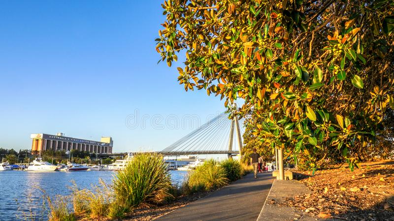 People walk around the narrow cement path in Federal Park near Rozelle Bay with Anzac bridge in the background. SYDNEY, AUSTRALIA-OCTOBER 4, 2013 : People walk royalty free stock photography