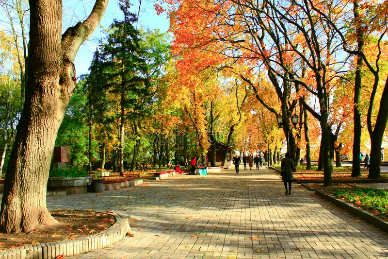 People walk in the autumnal city park stock photography