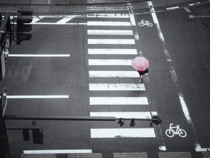 People walk on street Crosswalk Traffic sign in Raining day. Japan Urban road stock images