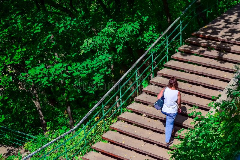 People walk up the stairs on a Sunny summer day. Among the bushes stock images