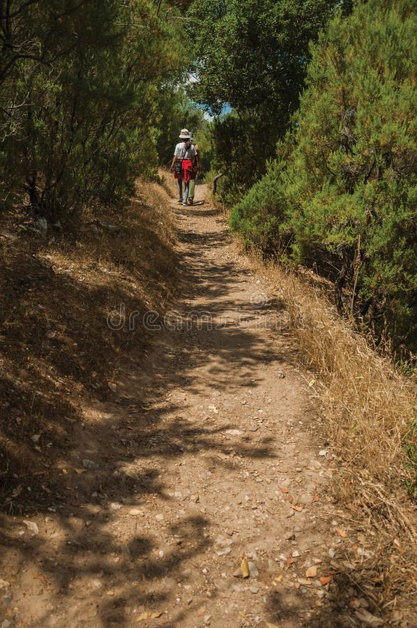 People walking along dirt path amid bushes and trees royalty free stock photo