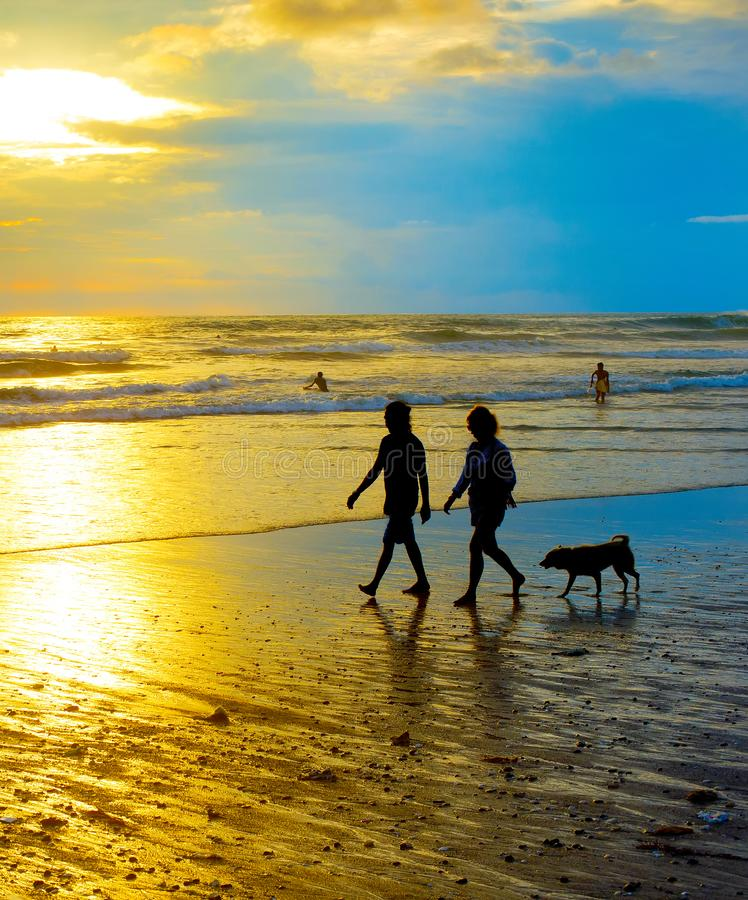 Island Beach People: Silhouette Couple Walking Dog Stock Photos