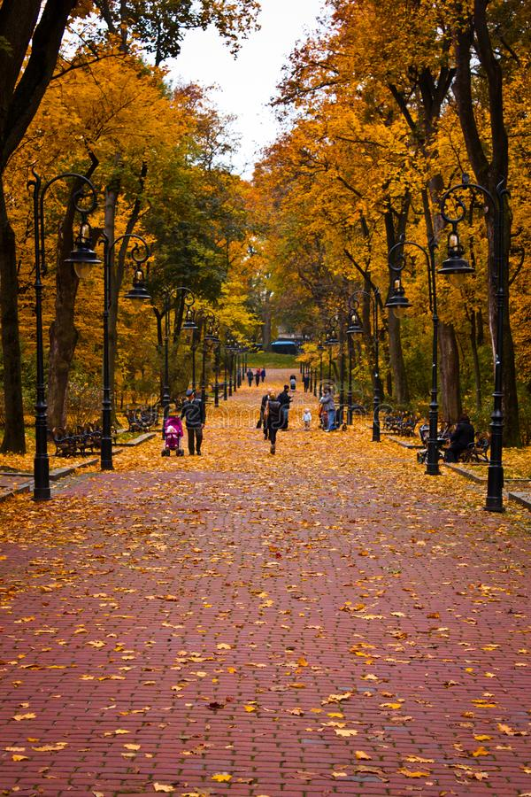 People walking in November in a park royalty free stock image