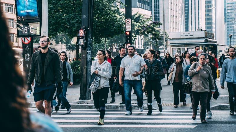 People Walking on Pedestrian Lane during Daytime stock images